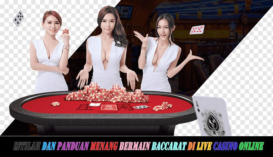 Istilah dan Panduan Menang Bermain Baccarat Di Live Casino Online